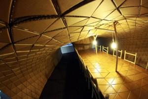 Pupa-Pavilion-by-Lazarium-5